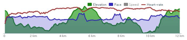 Intervalltraining 3x2000 m mit aktiver Pause (500 m traben)