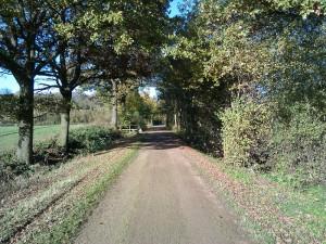 Perfektes Herbstwetter am 04.11.2012