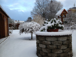 Unser Garten am 08.02.2013